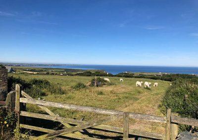 Tintagel local views